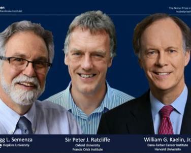 Dan Premio Nobel de Medicina a investigación celular